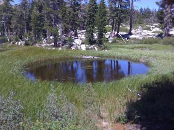 Alien Pond