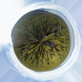 Tiny Planet Talmont